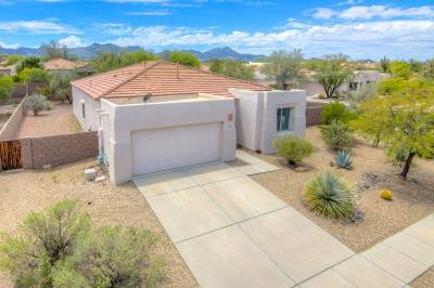Pima County Single Family Home For Sale: 4151 W Coles Wash Lane