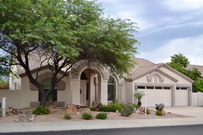 Tucson Single Family Home Active Contingent: 13022 N Whitlock Canyon Drive