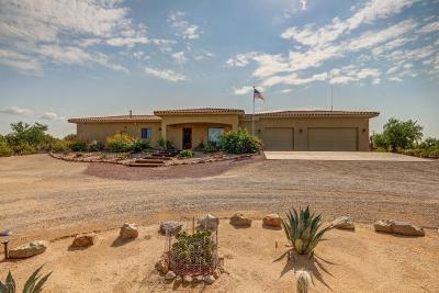 Pima County Single Family Home For Sale: 5755 W Potvin Lane