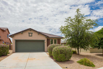 Vail Single Family Home For Sale: 10466 S Cutting Horse Drive