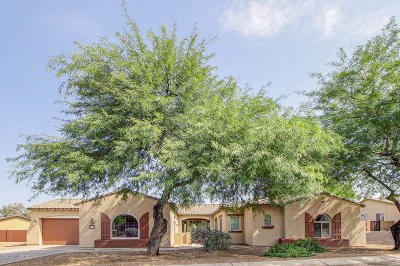 Single Family Home For Sale: 9855 S Camino De La Artina
