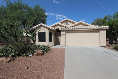 Sahuarita Single Family Home For Sale: 17988 S Camino Del Ferrocarril