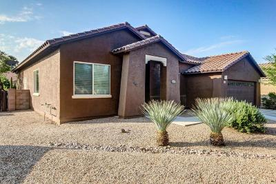 Marana Single Family Home For Sale: 12696 N Rangpur Drive