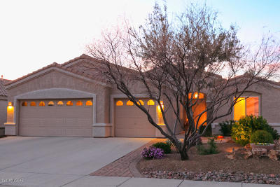 Oro Valley Single Family Home For Sale: 282 W Brinkley Springs Drive