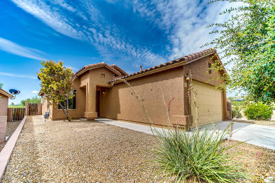 Single Family Home For Sale: 935 W Calle Barranca Seca