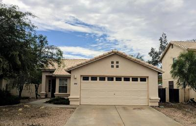 Tucson Single Family Home For Sale: 8597 N Cantora Way