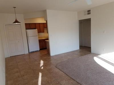 Pima County, Pinal County Condo For Sale: 5500 N Valley View Road #229