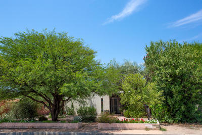 Tucson Single Family Home For Sale: 821 N Treat Avenue