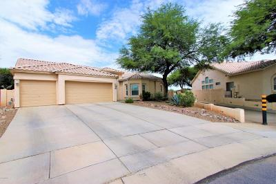 Pima County, Pinal County Single Family Home For Sale: 8301 N Poudre Drive