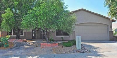 Green Valley Single Family Home For Sale: 4603 S Camino Del Tejon