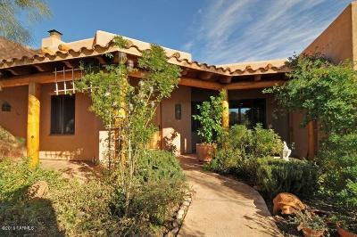 Rio Rico Single Family Home For Sale: 1451 Paiute Court