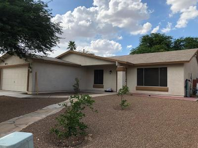 Tucson Single Family Home For Sale: 9641 E Azuma Way