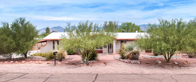 Tucson Single Family Home For Sale: 10631 E Calle Nopalito