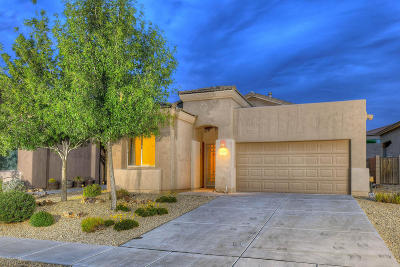 Single Family Home Active Contingent: 10431 S Cutting Horse Drive