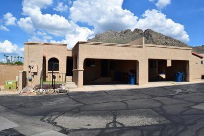 Tucson Single Family Home For Sale: 207 E Calle Diamante