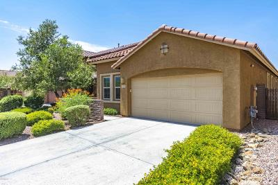 Pima County Single Family Home For Sale: 12963 N Camino Vieja Rancheria
