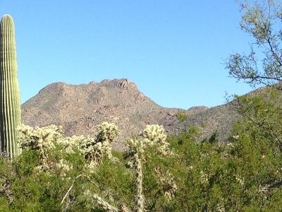 Pima County Residential Lots & Land For Sale: 12765 N Sonoran Preserve Boulevard #8-29