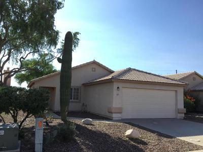 Pima County Single Family Home For Sale: 8049 N Eve Ann Way