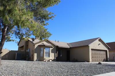 Tucson Single Family Home For Sale: 7261 S Camino Alegre