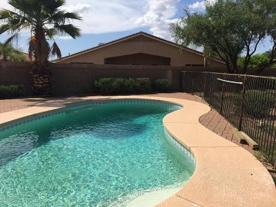 Pima County, Pinal County Single Family Home For Sale: 7538 S Dunbar Court