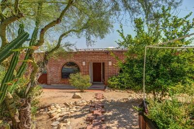 Pima County Single Family Home For Sale: 7615 N 1st Avenue