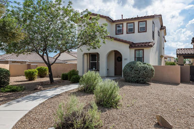Pima County Single Family Home For Sale: 759 W Paseo Celestial