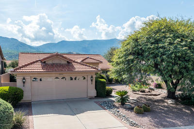 Pima County, Pinal County Single Family Home For Sale: 37975 S Mountain Site Drive