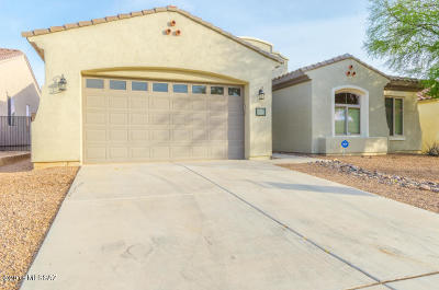 Pima County Single Family Home For Sale: 489 E Via Puente De La Lluvia