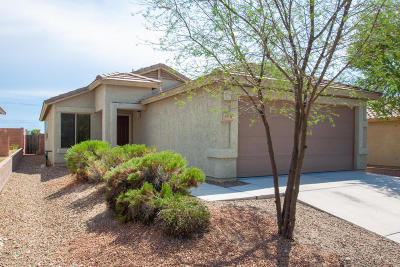 Tucson Single Family Home For Sale: 9998 E Country Shadows Drive