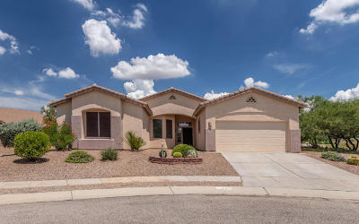 Pima County Single Family Home For Sale: 11073 S Camino San Clemente