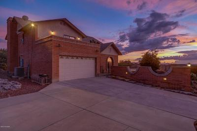 Pima County Single Family Home For Sale: 4491 W Irvington Road