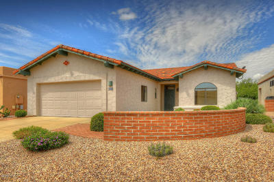 Pima County Single Family Home For Sale: 227 N Crescent Bell Drive