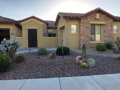 Pima County Single Family Home For Sale: 13621 N Napoli Way