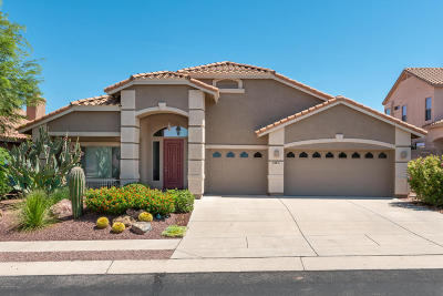 Pima County, Pinal County Single Family Home For Sale: 39971 S Mountain Shadow Drive