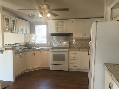 Pima County, Pinal County Manufactured Home For Sale: 727 W Lightstar Circle