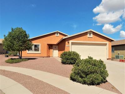 Pima County Single Family Home For Sale: 5686 S Ballantry Drive