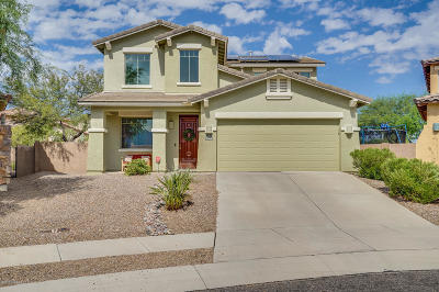 Pima County Single Family Home For Sale: 916 W Cork Oak Place