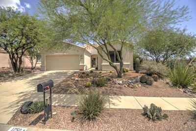 Pima County, Pinal County Single Family Home For Sale: 1750 N Rio Trinidad