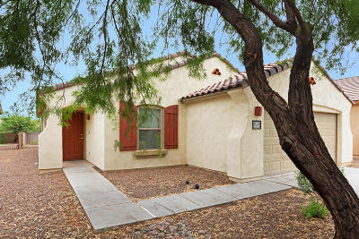 Pima County Single Family Home For Sale: 14491 S Camino Larga Vista