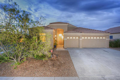 Pima County Single Family Home For Sale: 15001 N Rugged Lark Drive