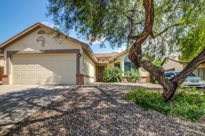 Pima County Single Family Home For Sale: 5017 W Condor Drive