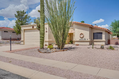 Pima County Single Family Home For Sale: 232 W Paseo Adobe