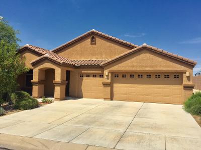 Pima County Single Family Home For Sale: 8191 N Willow Blossom Drive