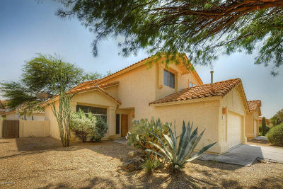 Pima County Single Family Home For Sale: 7792 E Elk Creek Road
