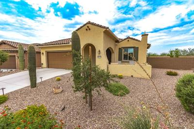 Pima County Single Family Home For Sale: 14273 N Lava Falls Trail
