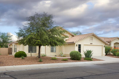 Pima County Single Family Home For Sale: 11795 N Cassiopeia Drive