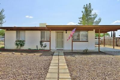 Pima County Single Family Home For Sale: 4674 S Primrose Street