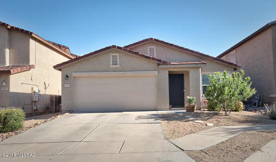 Pima County Single Family Home For Sale: 10390 E Malta Street