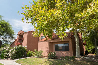 Tucson Condo For Sale: 5051 N Sabino Canyon Road #1210