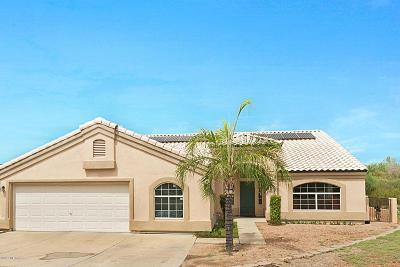Tucson Single Family Home For Sale: 4561 N Paseo De Los Rancheros